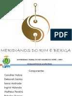 12 - Seminario - Meridianos Do Rim e Bexiga