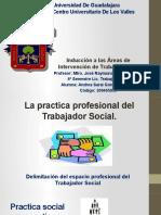 Inducción a las áreas de intervención social. Trabajo Social