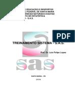 TREINAMENTO SISTEMA - S.A.S..pdf