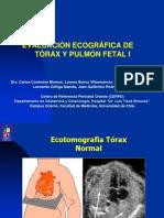 EVALUACION_ECOGRAFICA_DE_TORAX_Y_PULMON.pdf