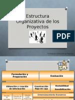 Estudio de La Organización Del Proyectovf (1)