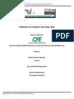 Ejemplo de Reporte Final de Servicio Social
