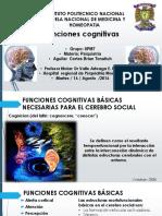psiquiatria (1)