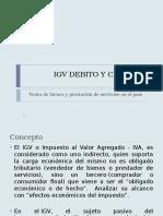 IGV Debido y Credito (1)