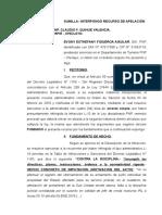 Apelacion de Figueroa Aguilar - Incumplimiento a Directivas