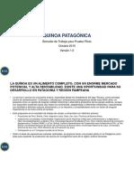 Business Case Quinua Patagonia