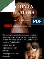 Anatomia Intro