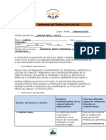 Informe de Detección Inicial.docx