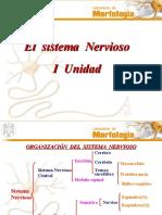 Nervioso 1