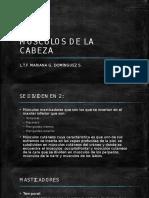 MÚSCULOS DE LA CABEZA.pptx
