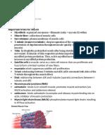 Muscle.pdf