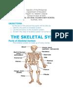Handouts in skeletal system
