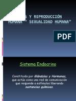 Hormonas y Reproduccion Humana