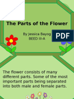 The Parts of the Flower Jessica ED6