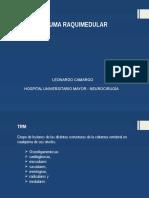 Trauma Raquimedular - Leonardo Camargo