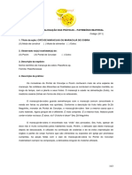 011 Cipó de Maracujá