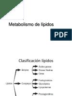 02.2. Metabolismo Lípidos