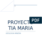 PROYECTO TÍA MARÍA casi final3.docx