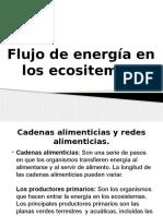 Flujo de Energía en Los Ecositemas