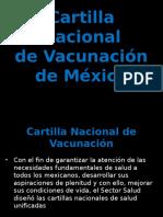 Esquema Nacional Vacunacion