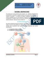 Tf 05-20-2015 Sistema Respiratorio Alexandra