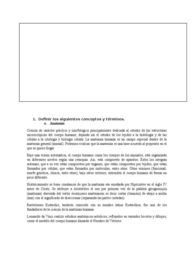Magnífico Definir La Anatomía Del Tejido Patrón - Anatomía de Las ...