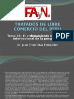 Tlc Peru - El Gatt