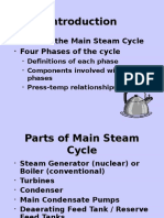 Main Steam Cycle