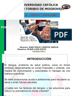 63895860 Monografia Dengue (1)