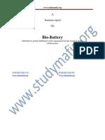 ECE Bio Battery Report