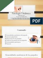 pato-ofta...-prueba-1.pdf