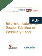 Informe Sobre El Sector Cárnico en Castilla y Le-n