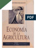 Agricultura_Economía Bejarano.pdf