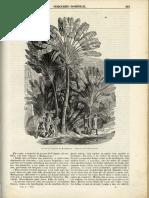 N.º 44 - 1859