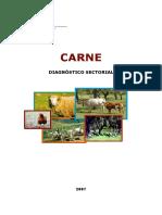 Carne__Diagnostico_Sectorial.pdf