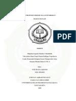 hasan hanafi 1.pdf
