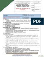 MANUAL DE DESCRIPCION DE PUESTOS PARA EL DESMANTELAMIENTO DEL PUENTE CHUMPE