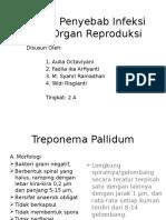 Bakteri Penyebab Infeksi Pada Sistem Reproduksi 2A
