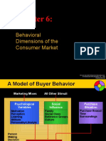 Chapter 6 - Behavioral Dimensions of the Consumer Market