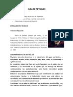 CUBA DE REYNOLDS.doc