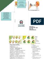 Esta guía ha sido diseñada para orientar a padres y tutores.docx