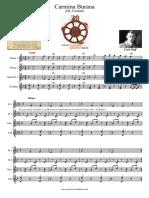 carmina burana_carl_orff_flauta_dulce.pdf