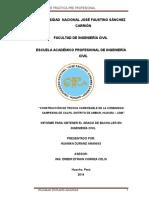 Contenido - Informe de Practicas Preprofesionales