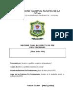 Estructura de Informe Final-PPP (1)