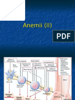 Anemii (II)