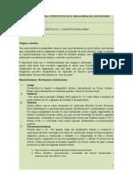 TEORIA GERAL DA CONSTITUIÇÃO E ORGANIZAÇÃO DO ESTADO.docx