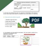139651511-PRUEBA-DE-CIENCIAS-NATURALES-TERCERO-BASICO (1).docx