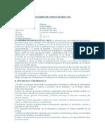 PROGRAMACIÓN CURRICULAR 1°_IA-P_Heraclides