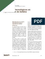 BUBALINOCULTURA - Avances Biotecnologicos en Reproduccion de Bufalos