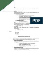 Resumen Ejecutivo CONTRATOS de Beymar Salinas